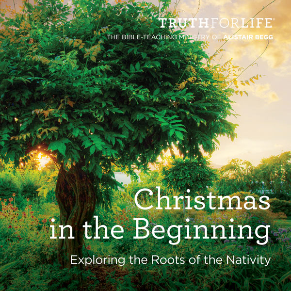 Christmas in the Beginning