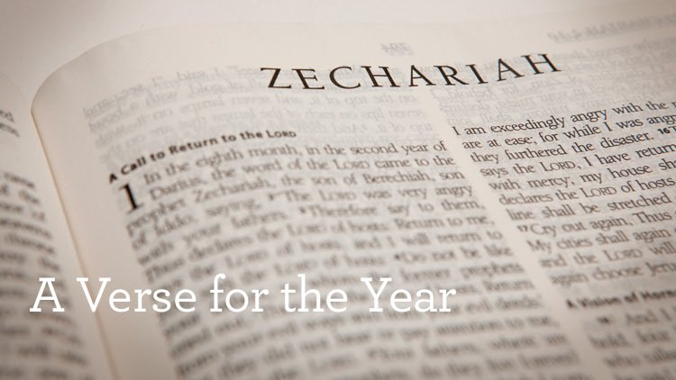 return to the main player