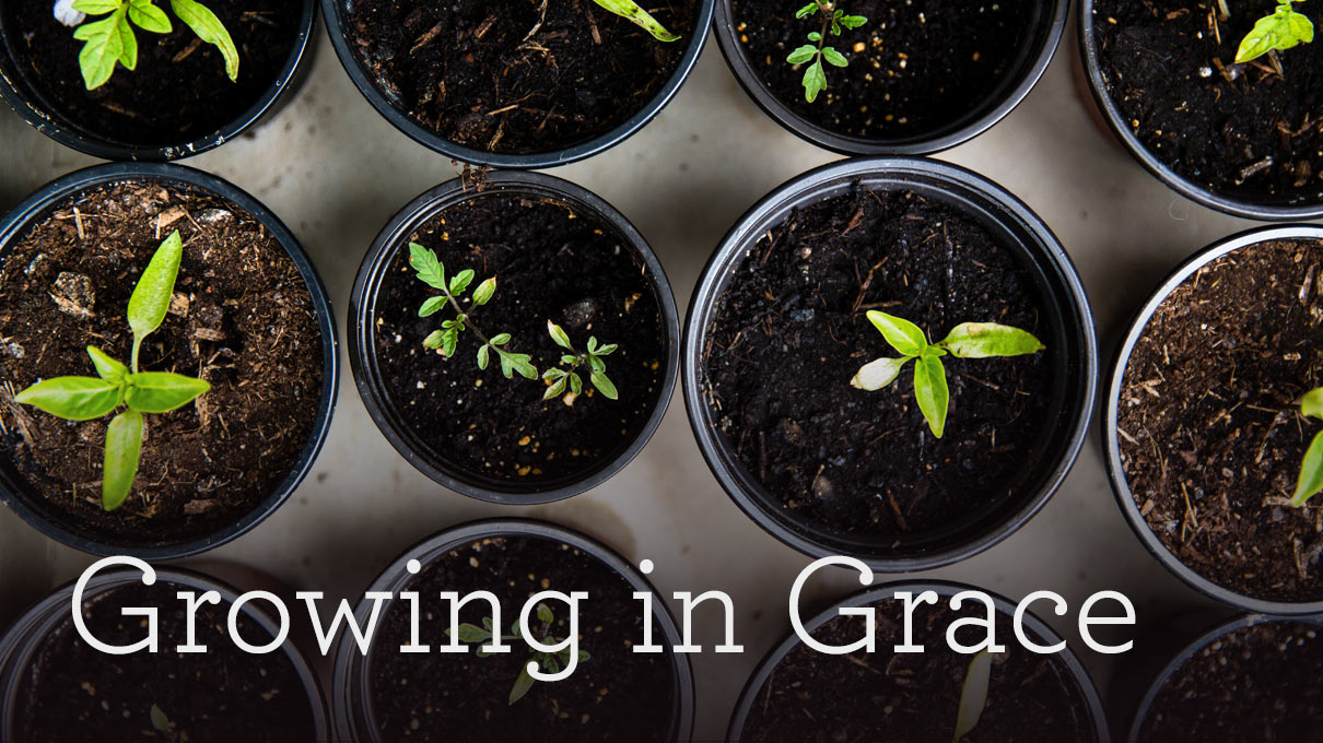 Growing in Grace (Part 2 of 2)