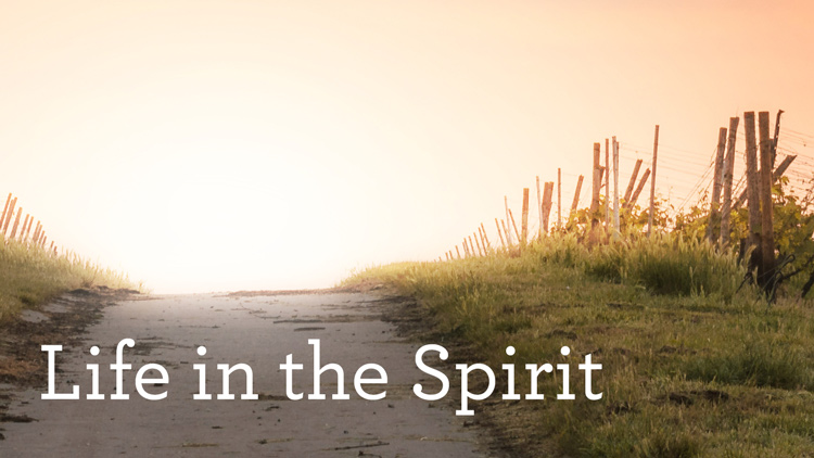 The Spirit of Sonship, Part B